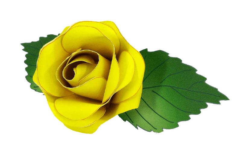 Роза (красная, желтая)