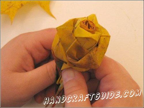 роза из осени