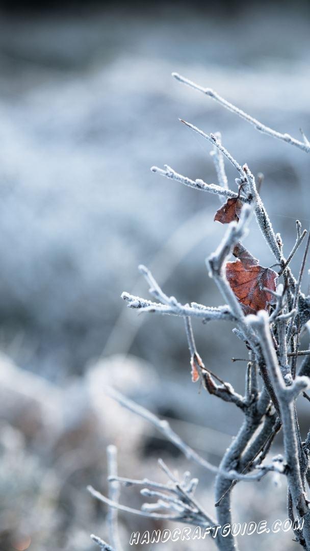 картинки зима на телефон