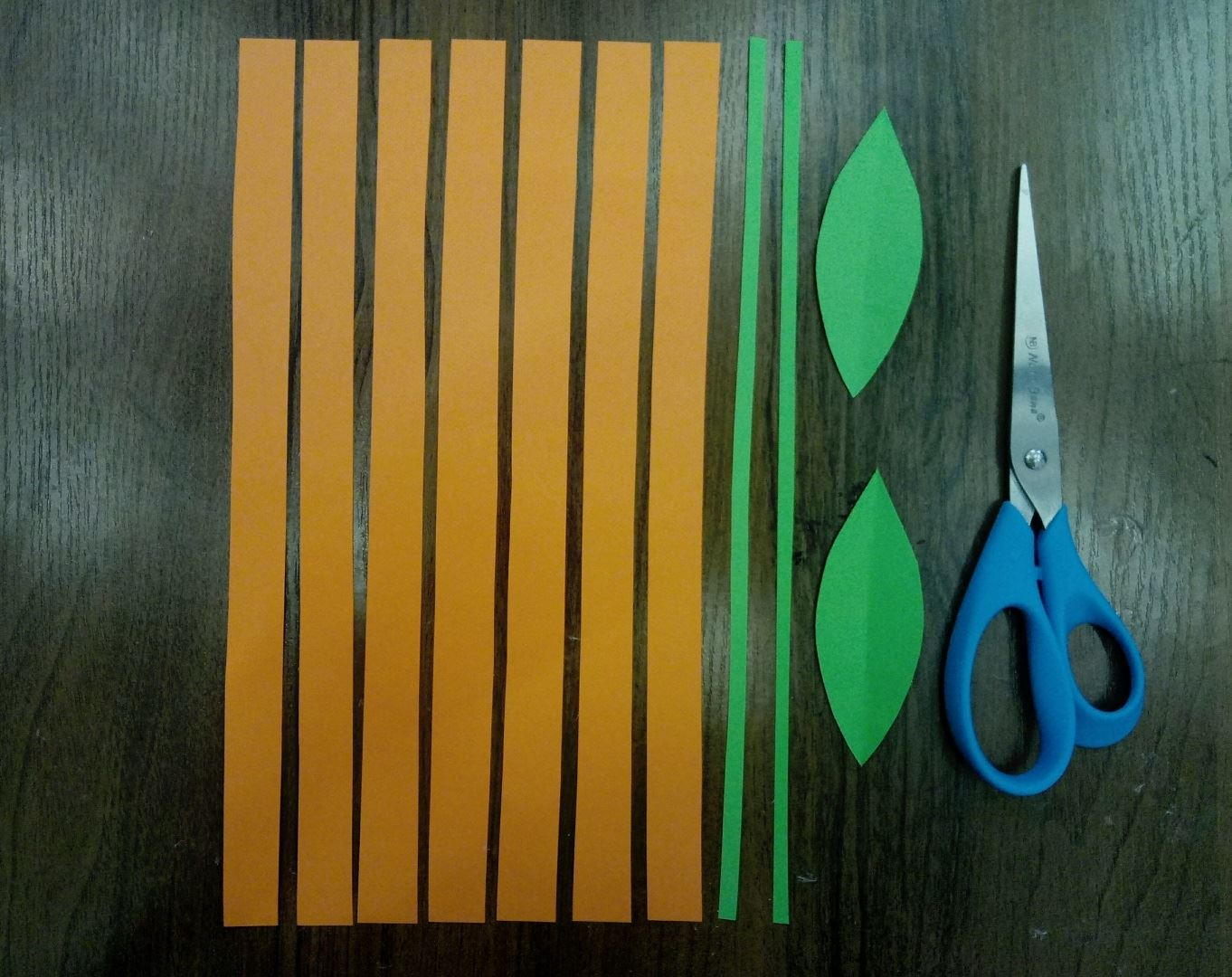 Cut out 7 orange strips, 2 green, but thinner and 2 petals.