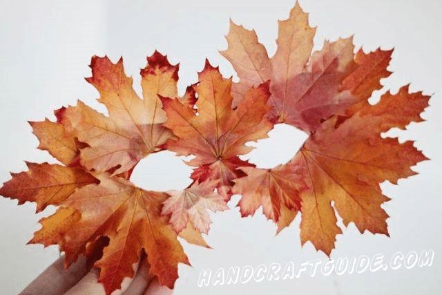 С помощью клея начинаем прикреплять к маске различные опавшие листья. Стоит начать с больших листьев по краям и медленно покрывать маску, заканчивая маленькими листьями ближе в середине маски.  Маска готова! До новых встреч друзья:)