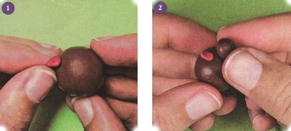 Roll the ball-shaped head using brown clay.