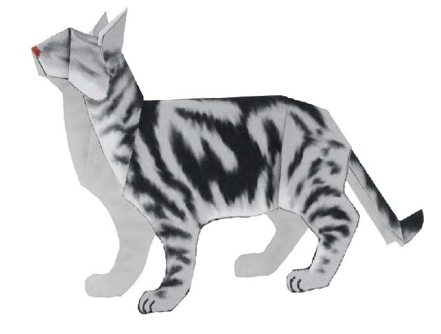 Американская короткошерстная (кошка)