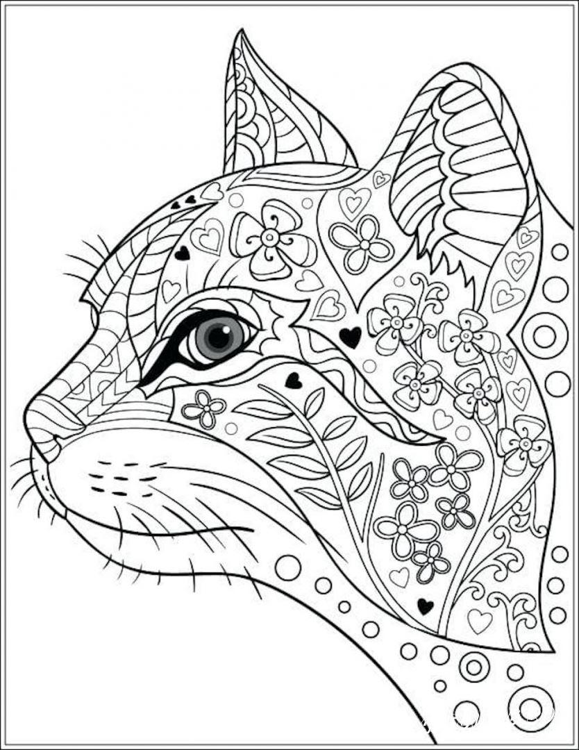 раскраски антистресс кошка распечатать