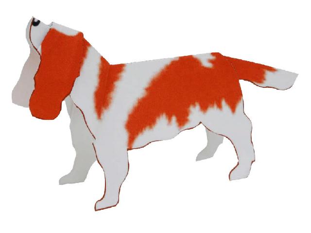 Cavalier king charles spaniel(dog)