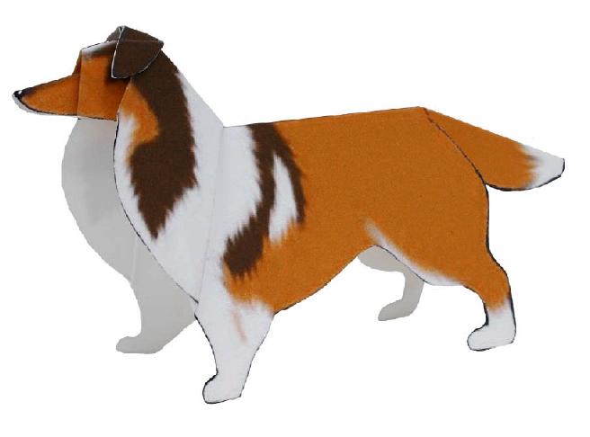 Шелти (собака)