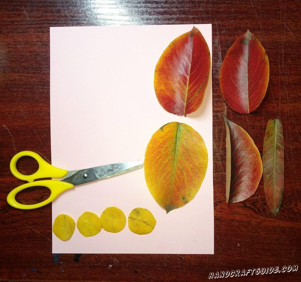 Из жёлтых листочков мы вырезаем четыре маленьких кружочка. Также нам нужно подобрать четыре листочка одинакового размера и один длинный листик.