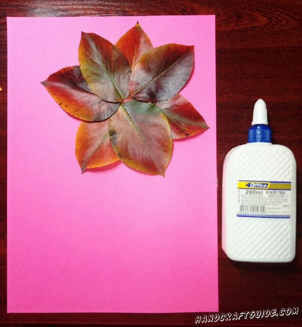 Собираем на улице опавшие листочки с деревьев. Пытаемся собрать примерно одного размера. Теперь на розовом листе бумаги мы склеиваем наши листики в цветочку, как показано на фото.