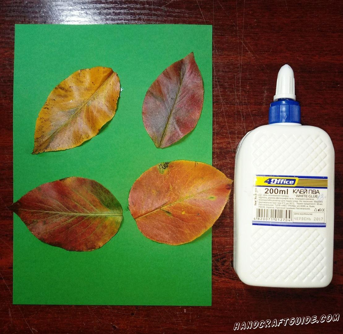 Приклеиваем наши листочки на зелёный лист бумаги, как показано на фото