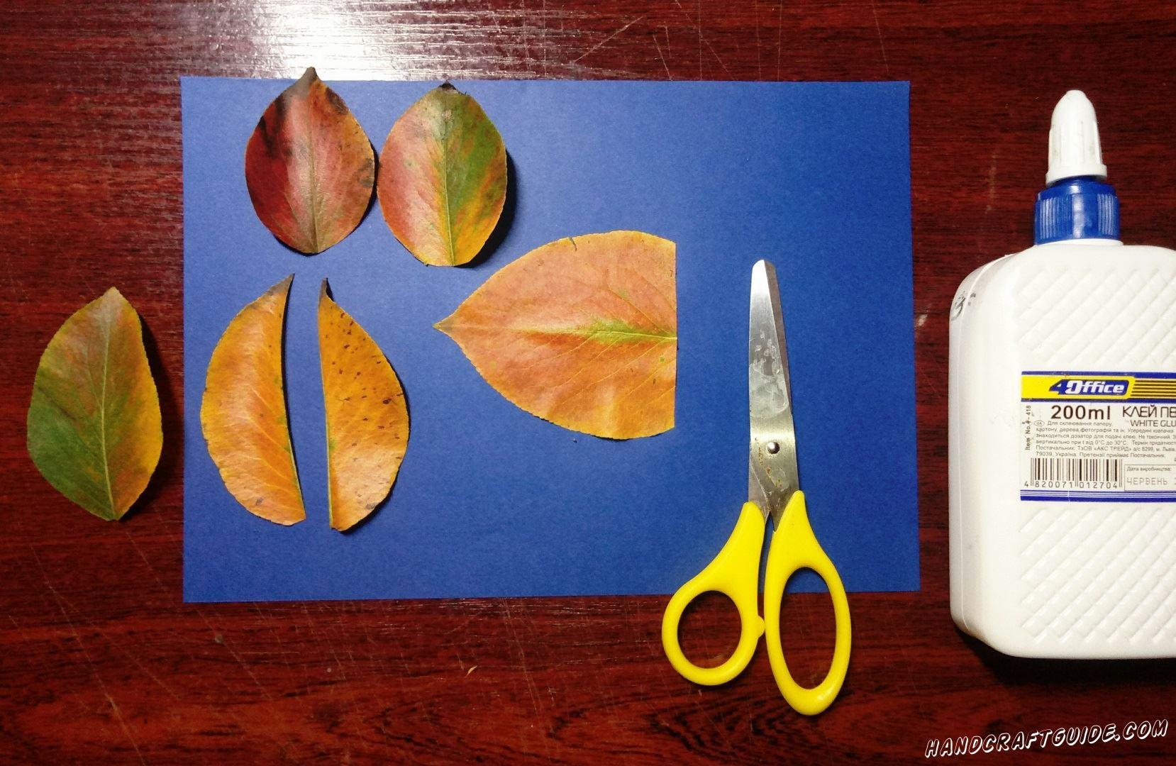 Сначала мы поработаем над формой двух осенних листочков: один листок мы обрезаем чуть ближе к нижней стороне, а второй разрезаем вдоль пополам. Ещё на одном листочке мы делаем ротик рыбки, но уже сбоку