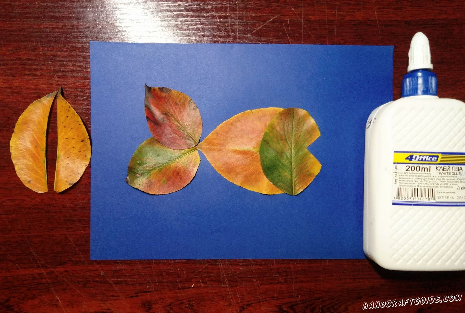 На середину синего листа бумаги мы приклеиваем первый листочек, к нему приклеиваем голову с ротиком, а с другой стороны плавник их целых листьев.