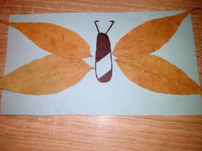 Нас ждёт замечательная аппликация из листьев, с изображением бабочки.
