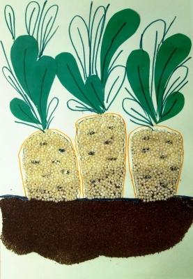 аппликация морковки из крупы и молотого кофе