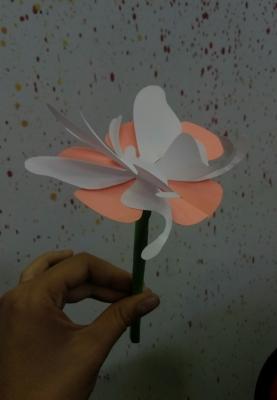 Давайте вместе сделаем замечательную поделку из цветной бумаги. Но для начала подготовим материалы.