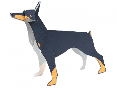 Dobermann(dog)