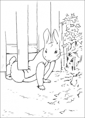 Peter Rabbit is a fictional animal character in various children's stories by Beatrix Potter. He first appeared in The Tale of Peter Rabbit in 1902 and subsequently in five more books between 1904 and 1912. Spinoff merchandise includes dishes, wallpaper, and dolls. He appears as a character in a number of adaptations.