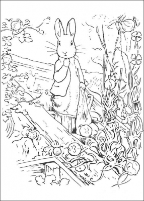 Peter Rabbit part 2